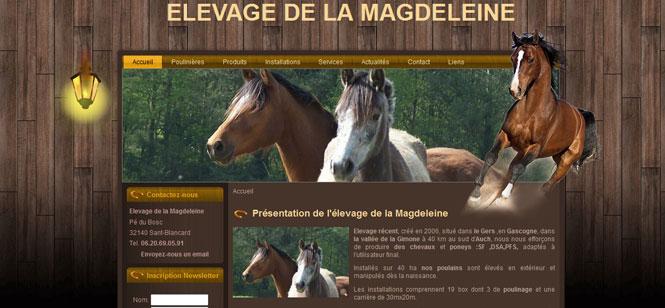 creation-site-internet-elevage-chevaux-magdeleine