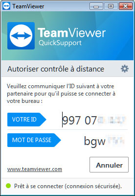 teamviewer support 1